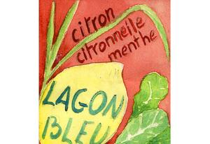 Infusion fruits Lagon bleu