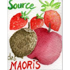 Infusion fruits La source des Maoris