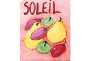 Infusion fruits Soleil